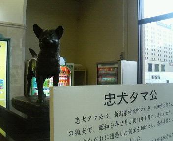 image/seiwa-d-2006-02-17T11:46:44-1.jpg